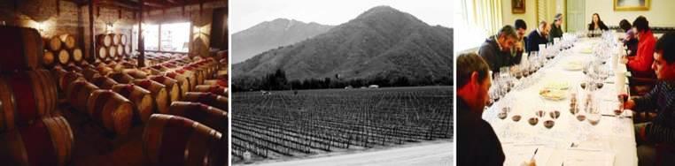 Chilean Wine embassador