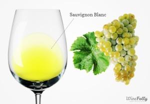 Sauvignon-blanc-wine-and-grapes-770x537 - wine folly