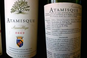 atamisque front & Back